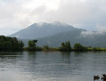 Cape Tribulation Tours river