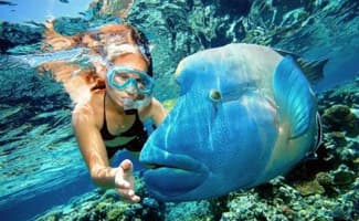 Reef Tours, Cairns Beaches Tours