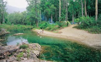 Rainforests, Sunshine Coast Activities