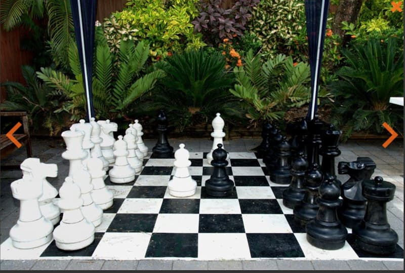 chess game for family